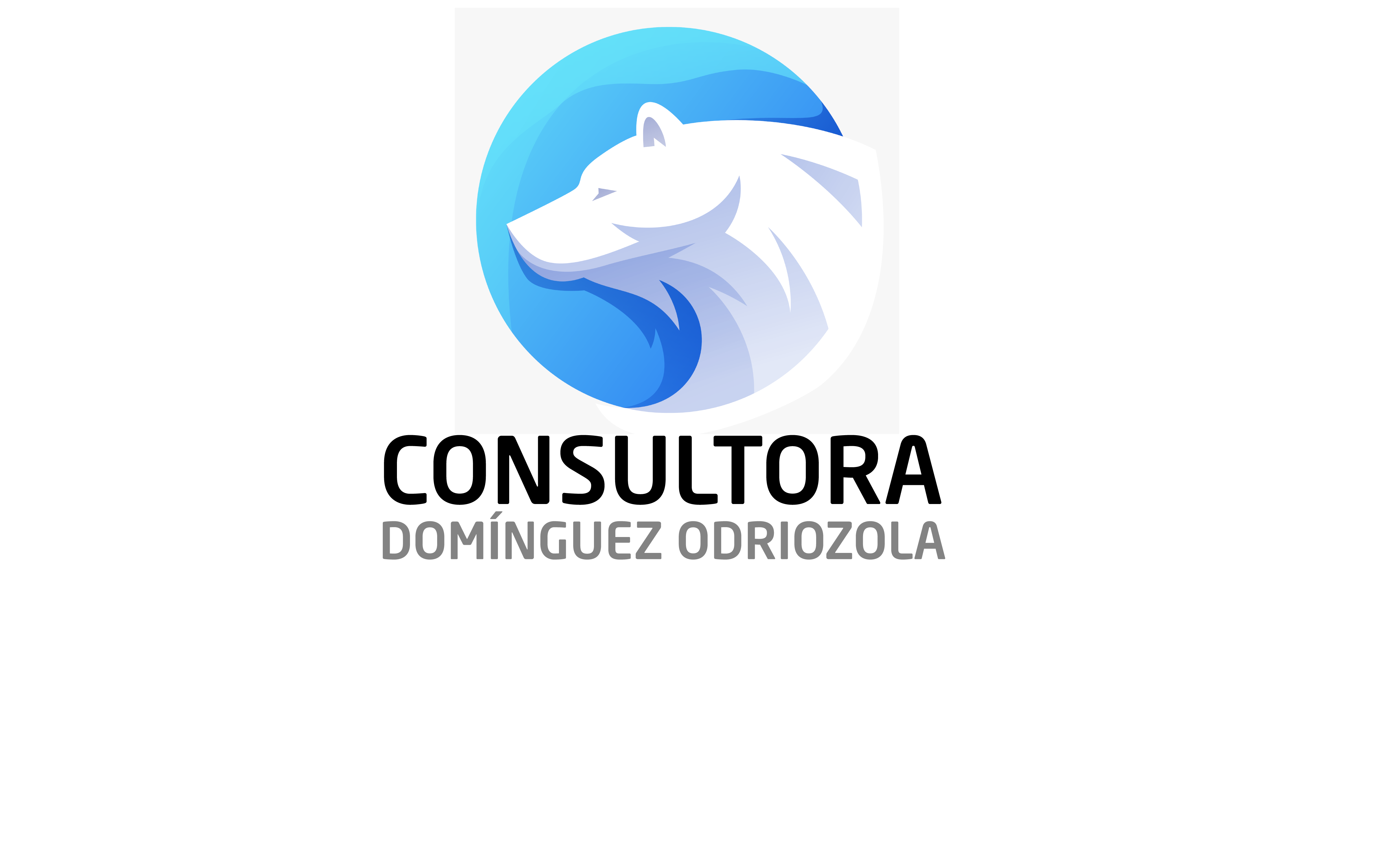 Consultora Domínguez Odriozola